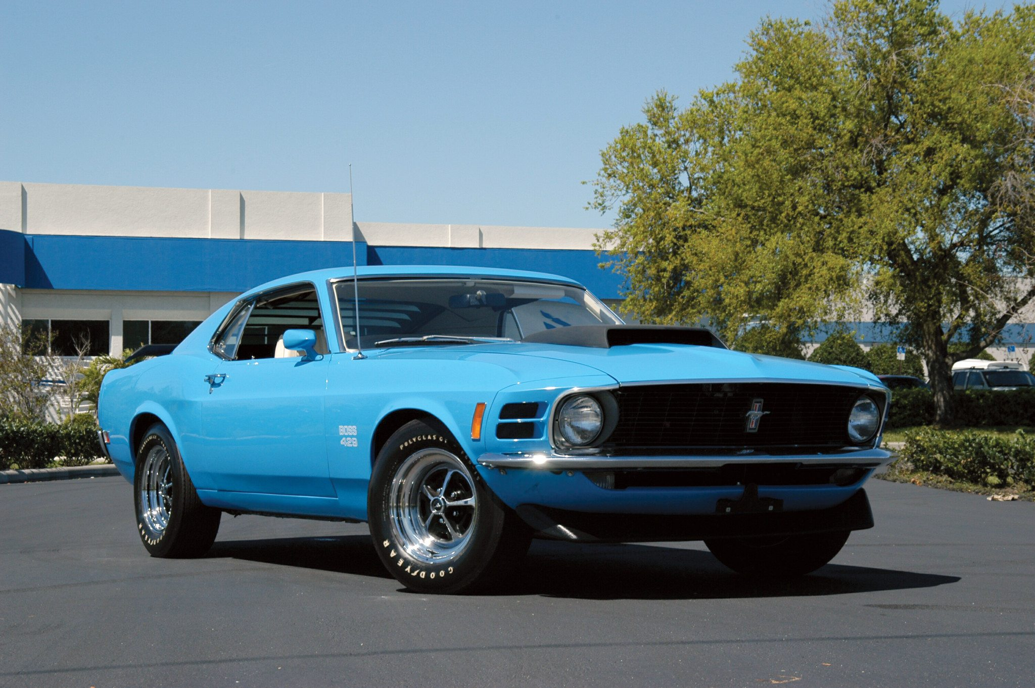ford 39 s boss 302 boss 429 mustangs heacock classic insurance. Black Bedroom Furniture Sets. Home Design Ideas