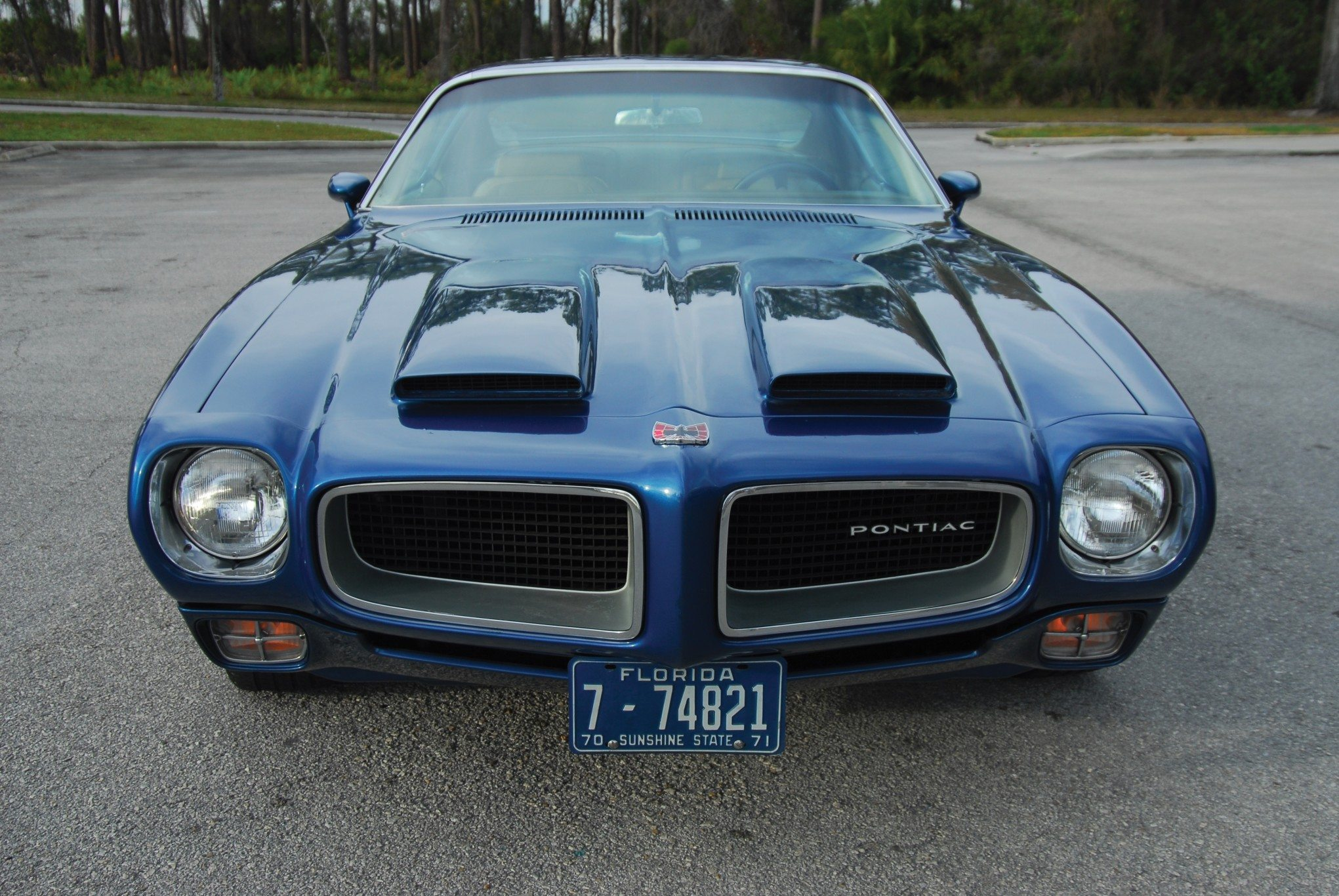 1970 Pontiac Firebird Formula 400 Front and Hood