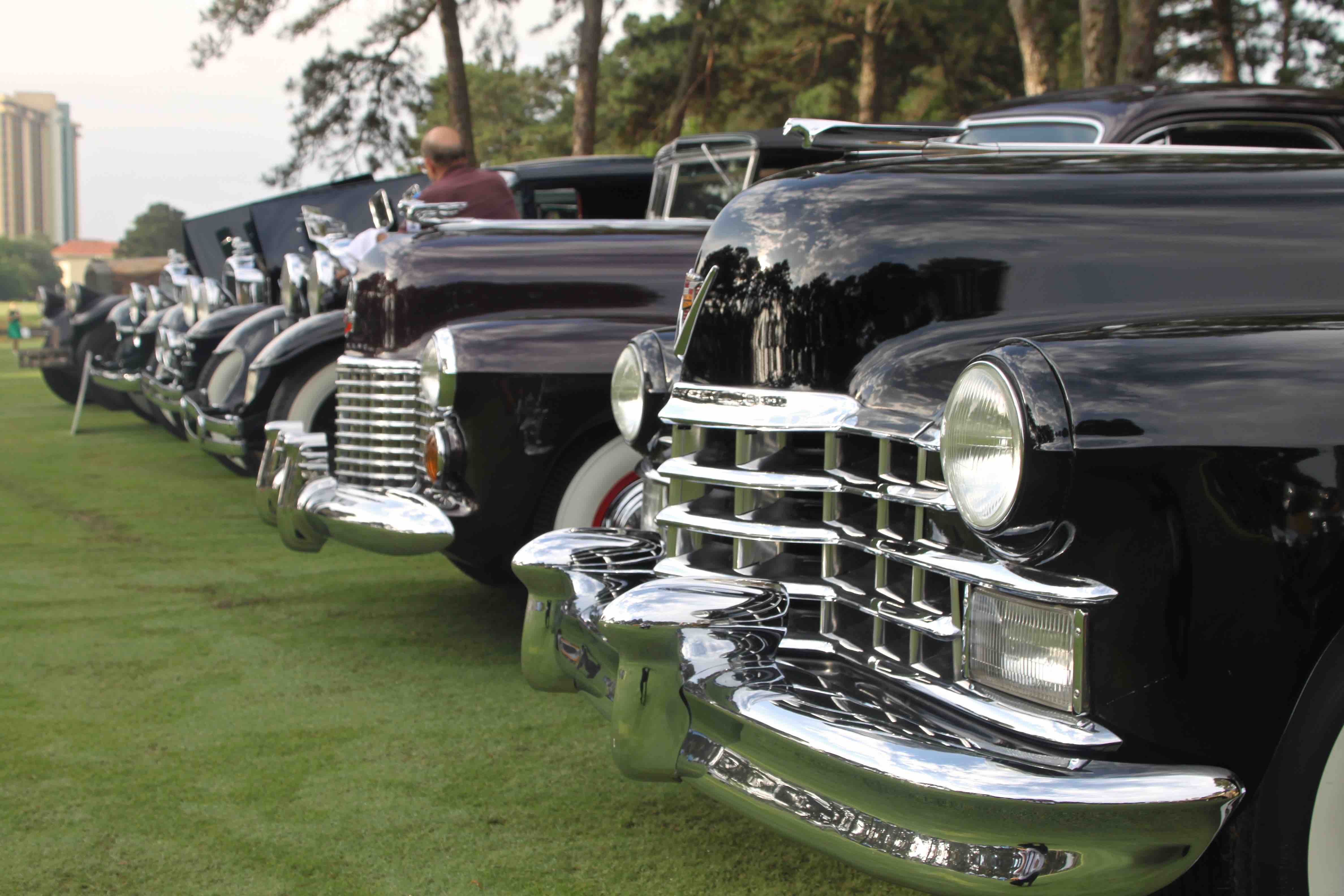 CoT 2015 car show row of classic cars