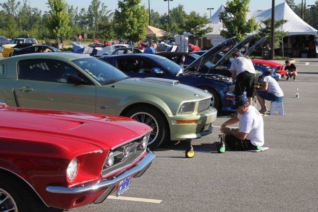 Mustang 7 2016