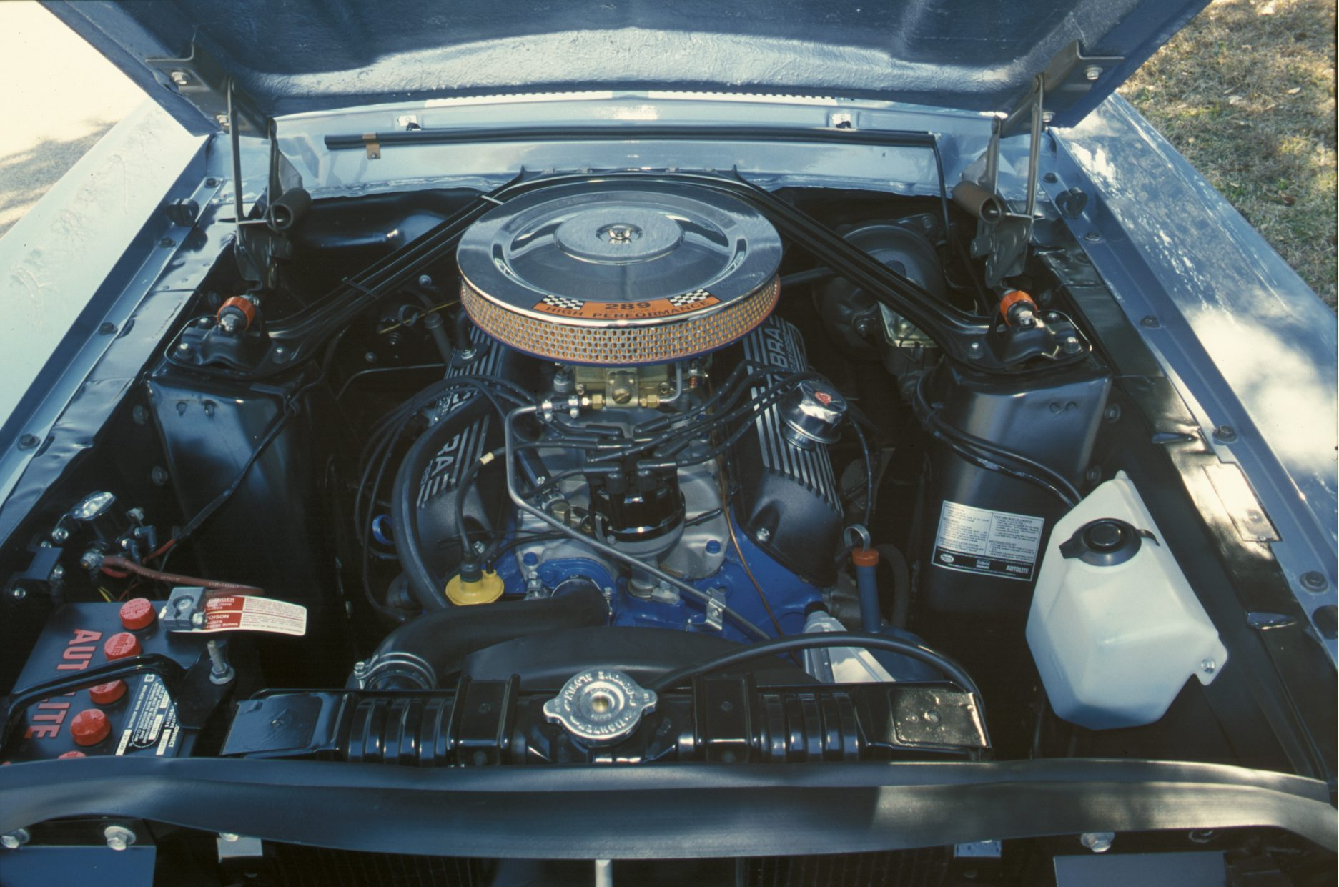 Shelby GT350 K-code 289 V8 Engine