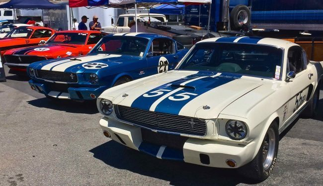 tommy-race-4-mustang-row